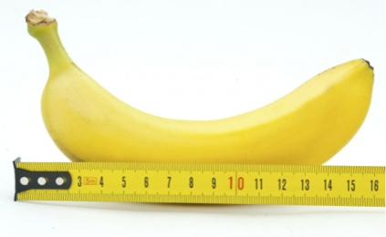 Average size banana